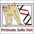 Primate Information Network